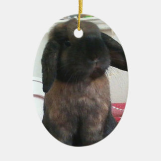Let this little guy bring furriness to your tree ceramic ornament