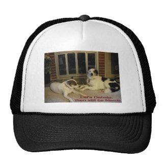 Let's Debate; then still be friends2 Trucker Hat