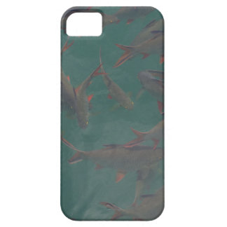 Let's go fishing!!! iPhone 5 cases