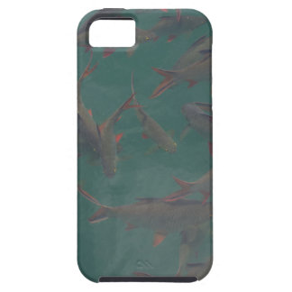 Let's go fishing!!! iPhone 5 covers