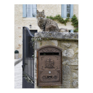 Letter Box and Cat on the Wall, Lot et Garonne, Postcard