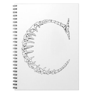 Letter C Bone Initial Notebook