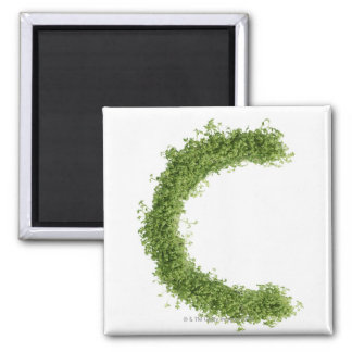 Letter 'C' in cress on white background, Square Magnet