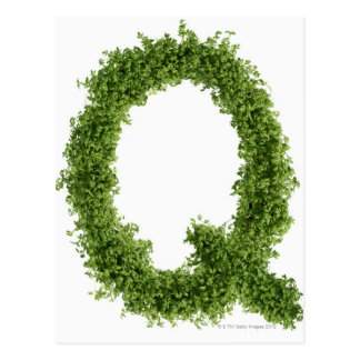 Letter 'Q' in cress on white background, Postcard