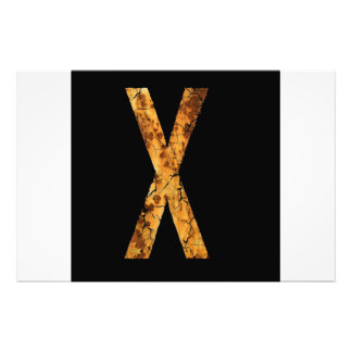 Letter X Photographic Print