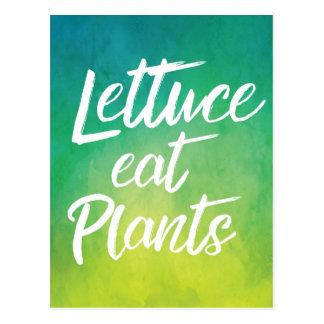 Lettuce Eat Plant Vegetarian and Vegan Humor Postcard