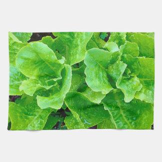 Lettuce Kitchen Towel