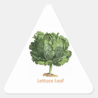 """""""Lettuce Leaf"""" Vintage lettuce image Triangle Sticker"""