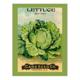 Lettuce Seed Pack Postcard
