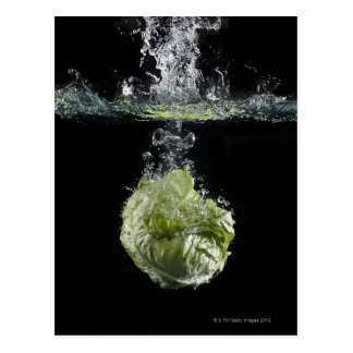Lettuce splashing in water postcard