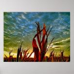Lever de soleil au champ de maïs posters