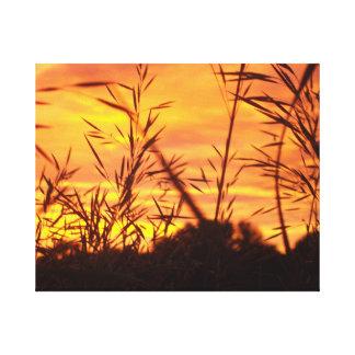 Lever de soleil par l'herbe toiles