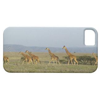 Lewa Wildlife Conservancy, Kenya iPhone 5 Case
