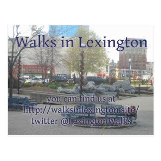 Lexington Walks Postcard