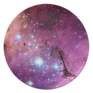 LHA 120-N11 Star Formation Hubble Space Photo Plate