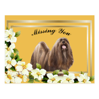 Lhasa Apso gold frame with dogwood flowers Postcard