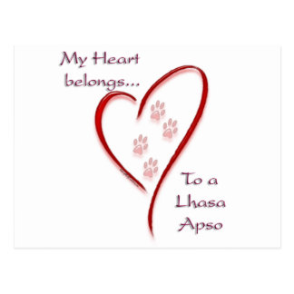 Lhasa Apso Heart Belongs Postcard
