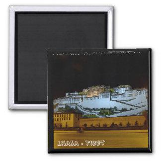 Lhasa, Potala Palace - Tibet 2 (Fridge Magnet) Magnet