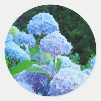 L'hortensia bleu fleurit le jardin d'été autocollants ronds