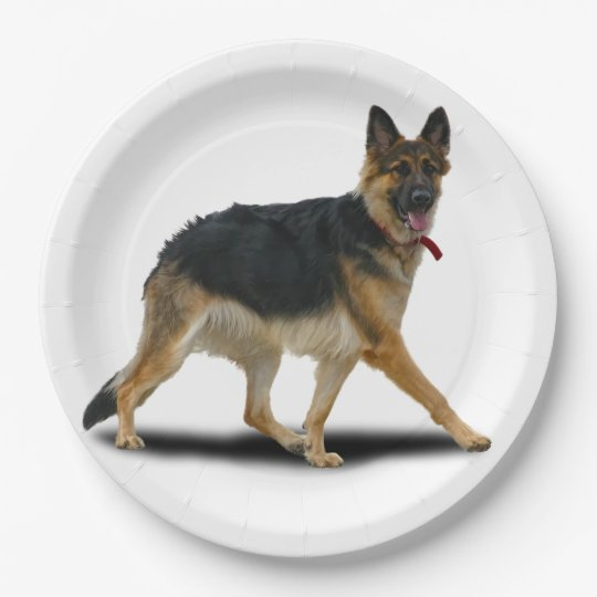 LIBBY 9 INCH PAPER PLATE