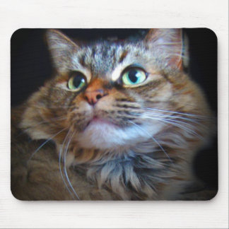 libby cat mousepad