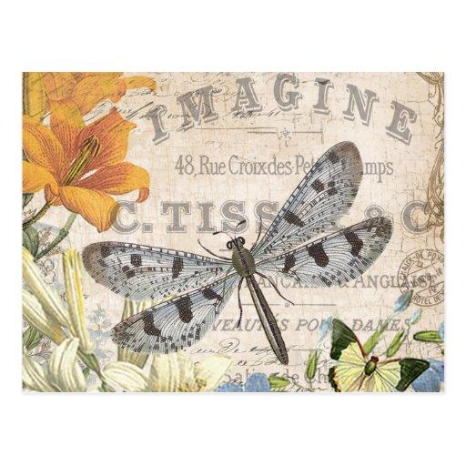libellule française vintage moderne cartes postales