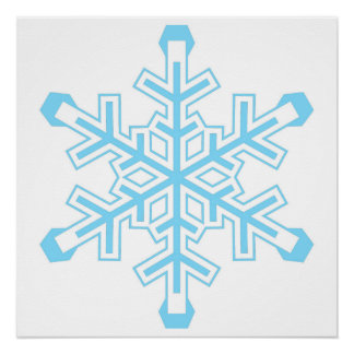 Liberal Snowflake Protest Sign or Poster Perfect Poster