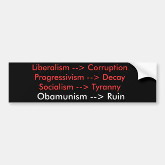 Liberalism is an entry level path to Ruin Bumper Sticker