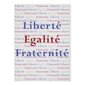 Liberte Egalite Fraternite Poster - Viva La France