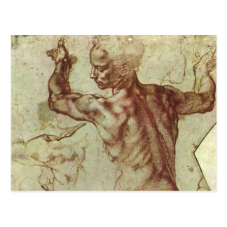 Libyan Sibyl Study by Michelangelo Renaissance Post Card