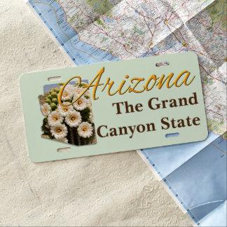 License Plate - ARIZONA