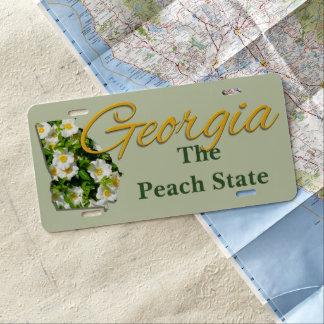 License Plate - GEORGIA