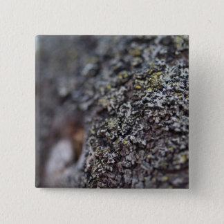 Lichen on Bark 2 Inch Square Button