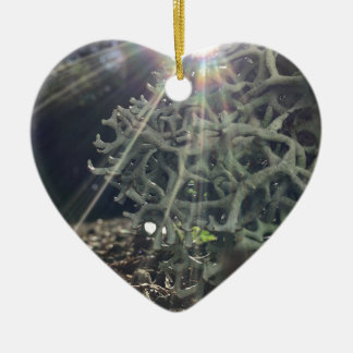 Lichen Rays Ceramic Heart Ornament