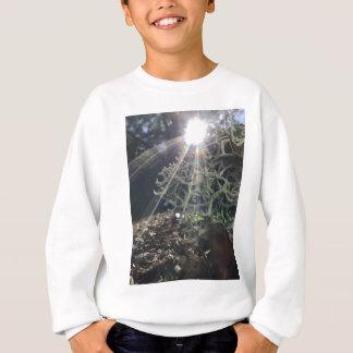 Lichen Rays Sweatshirt