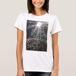 Lichen Rays T-Shirt