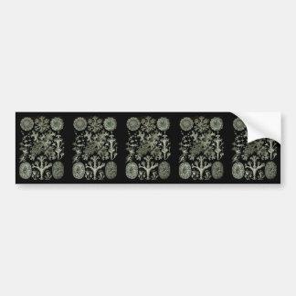 Lichens Bumper Sticker
