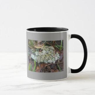 Lichens Mug
