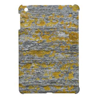 Lichens on granite stone case for the iPad mini