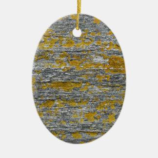 Lichens on granite stone ceramic ornament