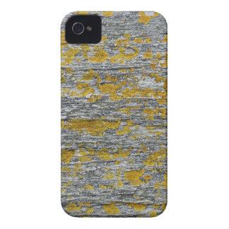 Lichens on granite stone iPhone 4 cover
