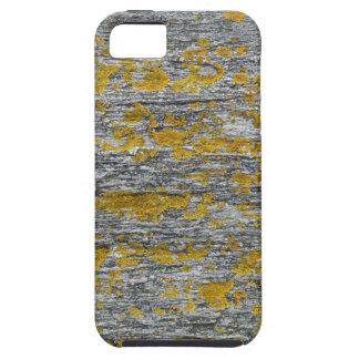 Lichens on granite stone iPhone 5 case