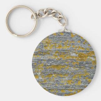 Lichens on granite stone keychain