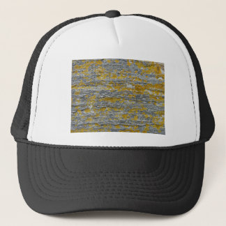 Lichens on granite stone trucker hat