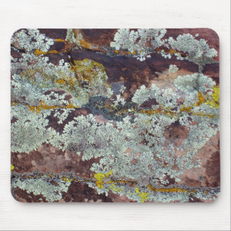 Lichens on Rock #4 Mouse Pad