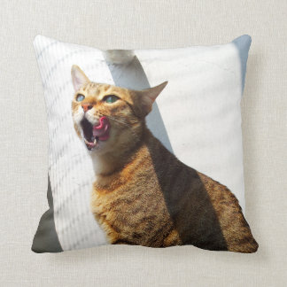 Licking tabby brown cat pillow. pillows