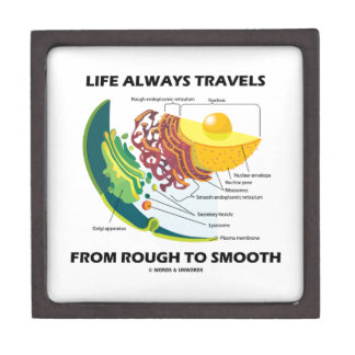 Life Always Travels From Rough To Smooth Premium Jewelry Boxes