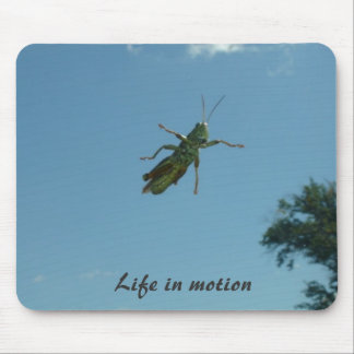 Life in motion mouse pad