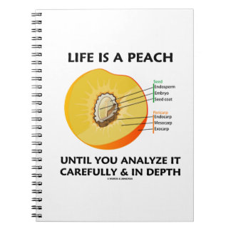 Life Is A Peach Until You Analyze Carefully Depth Notebook