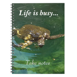 Life is Busy - Take Notes Notebook